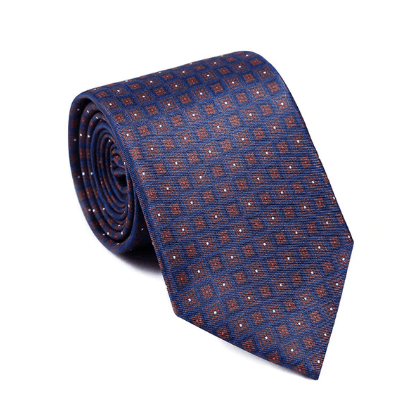 Luxury Navy Medallion Printed Tie